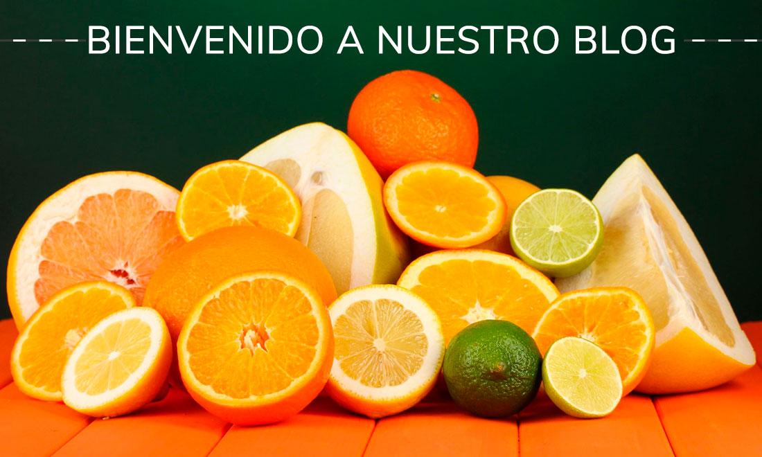 compra-venta-cítricos-y-otras-frutas-Alicante